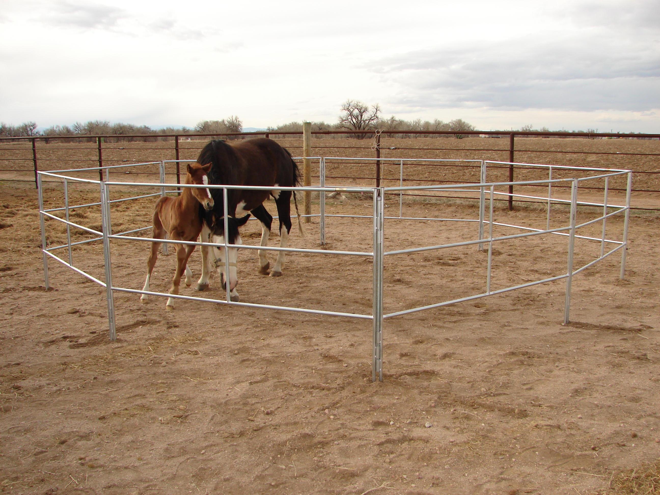 how to build a horse corral